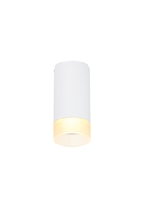 ASTINA QPAR51, Indoor surface-mounted ceiling light, white